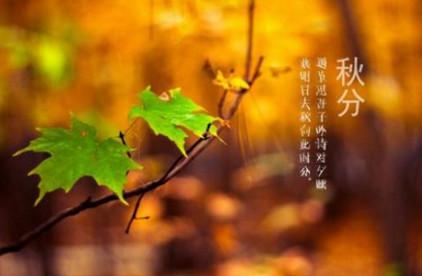 秋分图片素材精选|秋分图片插画壁纸高清版-东坡下载