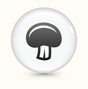 蘑菇文件备份恢复工具1.0 最新版