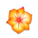 Adobe Illustrator cs2破解版12.0 最新免费版