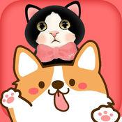 猫狗语翻译器ios版1.0 手机版