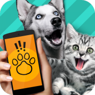 猫狗翻译器软件1.1 安卓中文版