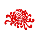 红菊社区app1.1 安卓手机版