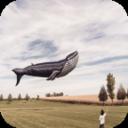 哈哈天气app1.0 安卓最新版