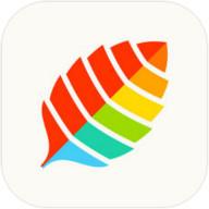 薄荷健康app6.1.0.1 安卓最新版