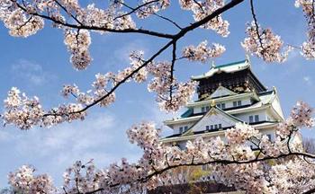 日本旅游必备app