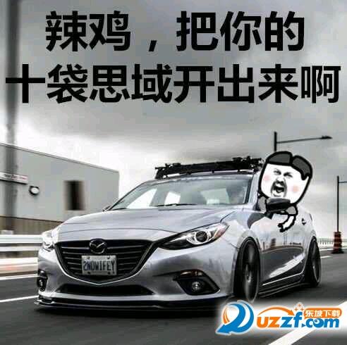 南京十代思域表情包图片