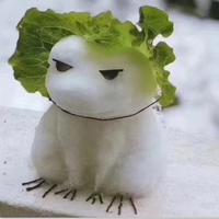 不用再等你的蛙了表情图片