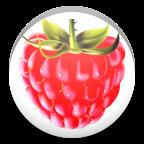 祯心数学app1.6 安卓学习版
