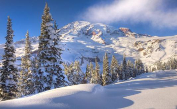 冬天下雪的�D片大全