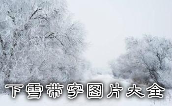 下雪带字图片大全