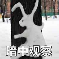 雪人表情包