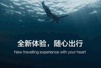 铂涛旅行app