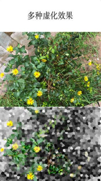 XN虚化相机截图