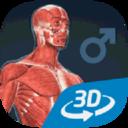 人体男互动教育3D软件