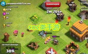 coc�游�蚺判邪�_最新coc�手游