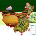 南方地区自然特征与农业ppt课件