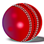 打板球(Hit Cricket )1.1.0 安卓版