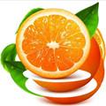 橙子视频vip至尊卡破解版