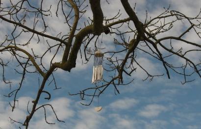 幼儿园关于秋天树枝的手工作品风铃