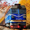 坐上秋天的火车读后感400字doc免费下载
