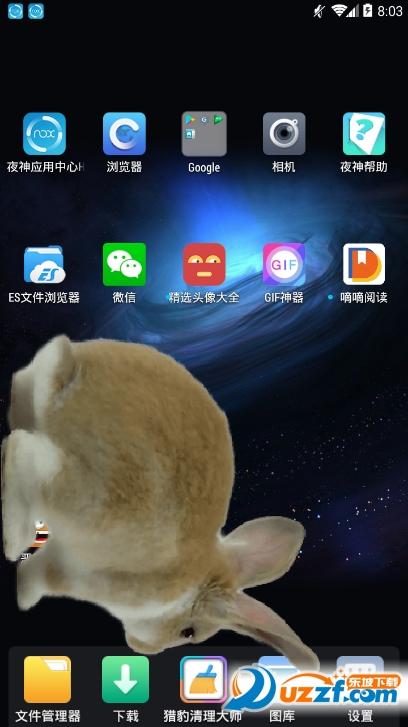 激萌桌面宠物app截图2