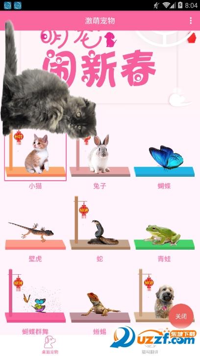 激萌桌面宠物app截图3