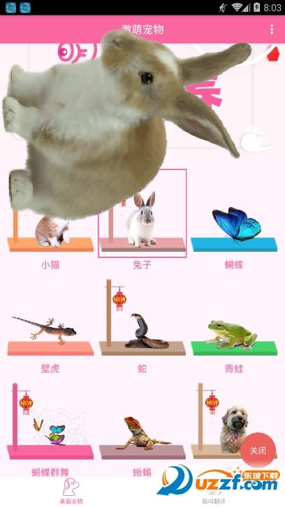 激萌桌面宠物app截图1