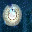 毁灭纪元1.3.5正式版【附隐藏英雄密码】