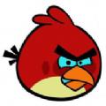 小鸟pt安卓版