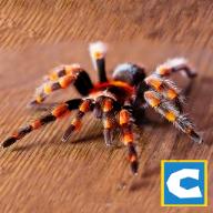 终极蜘蛛模拟器安卓版