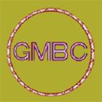 GMBC挖矿手机版