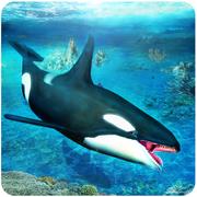 虎鲸模拟器3D(Killer whale simulator)1.0 苹果版