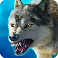 抖音游戏狼族(The Wolf)