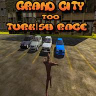 土耳其大城比赛(Grand City Turkish Race)0.1.0 安卓版