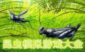 昆虫模拟手机游戏
