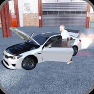 极限汽车驾驶员(Extreme Car Driver)
