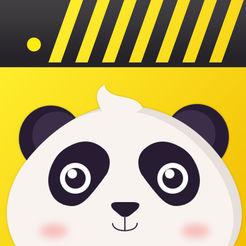 熊猫动态视频壁纸