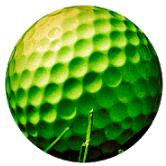 迷你高尔夫球场(Mini Golf Arena)
