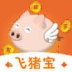 飞猪宝app