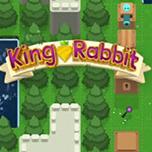 兔王冒险记 英文版