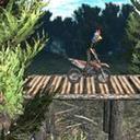 自行���森林游��1.3 手�C版