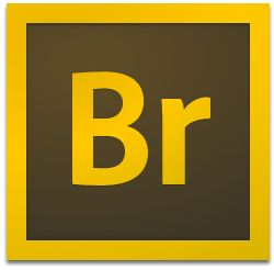 Adobe Bridge CC2020中文破解版