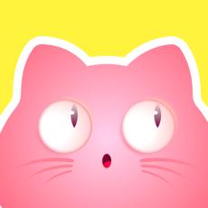 喵喵社区app最新版1.0 官网版