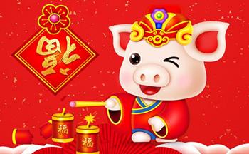 祝福视频制作app_2019猪年祝福视频制作软件