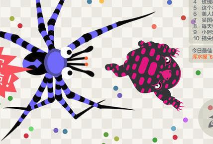 蜘蛛蛤蟆大作战游戏