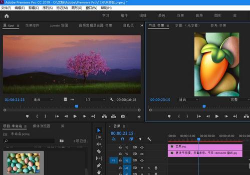 Adobe Premiere Pro CC 2019中文免�M版
