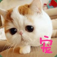 宠物翻译官app1.0.2 安卓版