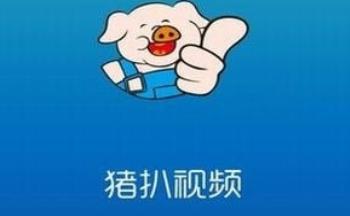 类似猪扒视频的app