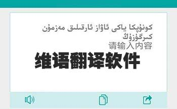 维语翻译器_维语汉语语音翻译助手