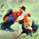 斗鸡激斗手游1.0 安卓版